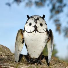 Hibou blanc ailes