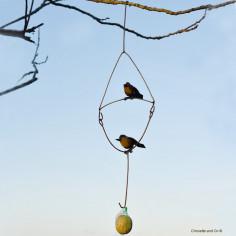 Deux oiseaux balancier et crochet