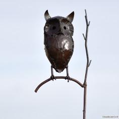 Hibou sur branche