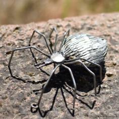 Araignée galva