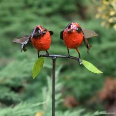 Tuteur deux oiseaux colorés