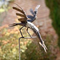 Oiseau galvanisé